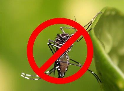 Capacitação no combate a Dengue