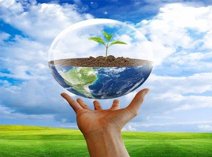 Os Seres Vivos e o Meio Ambiente